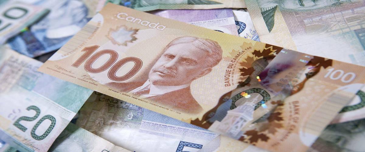 هزینه ها و مدت زمان بررسی درخواست طرح خود اشتغالی در کانادا