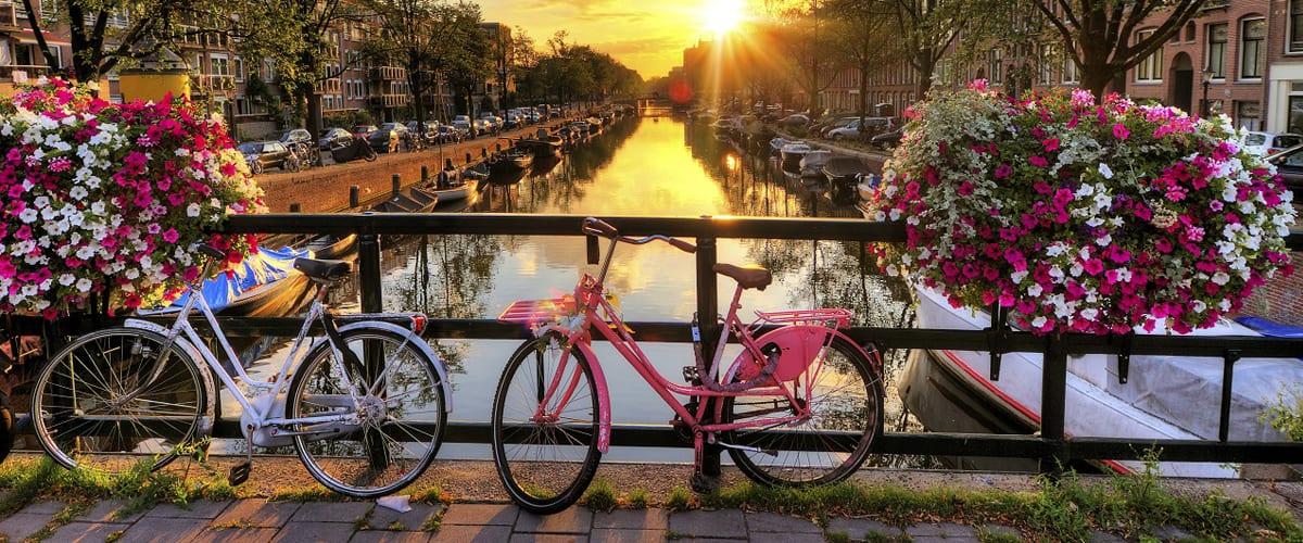 انواع روش های مهاجرت-هلند
