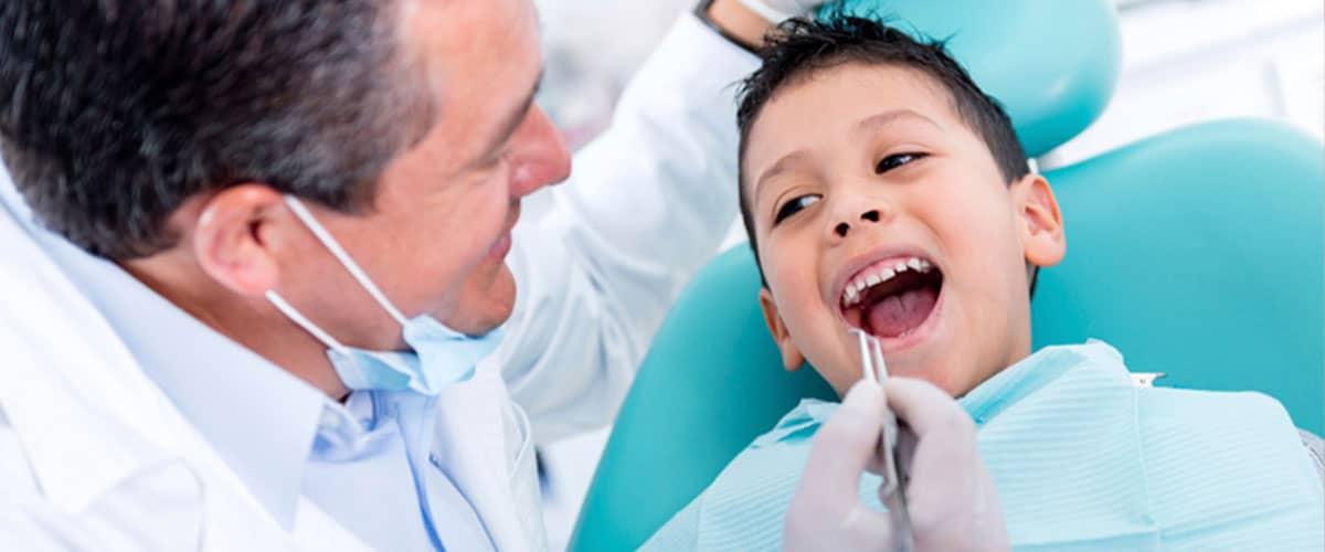 تحصیل در لهستان-تحصیل در لهستان دندانپزشکی