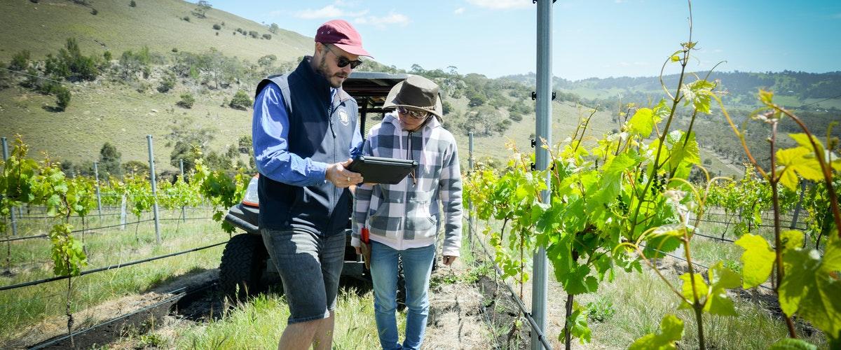 مهندسی کشاورزی در استرالیا - در مقطع کارشناسی ارشد