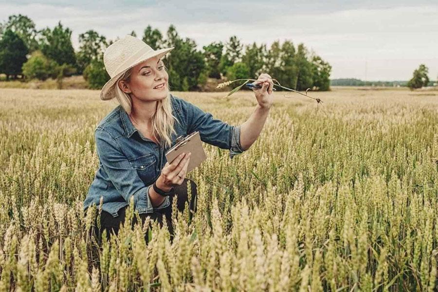 مهندسی کشاورزی در استرالیا