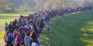 بهترین کشور برای پناهندگی